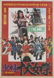 소림십대여걸 (1981) 이미지
